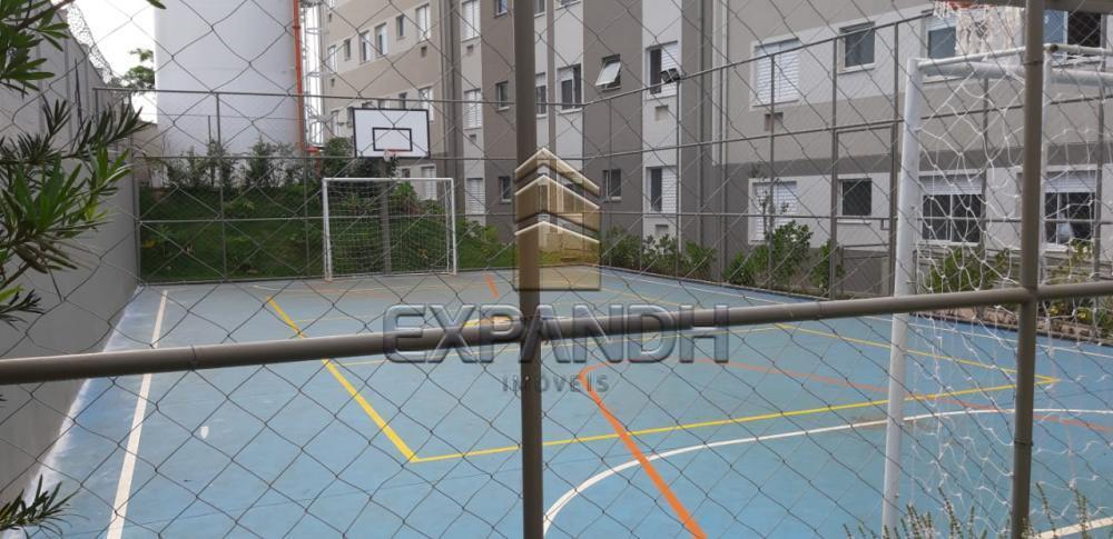 Alugar Apartamentos / Padrão em Sertãozinho apenas R$ 600,00 - Foto 3