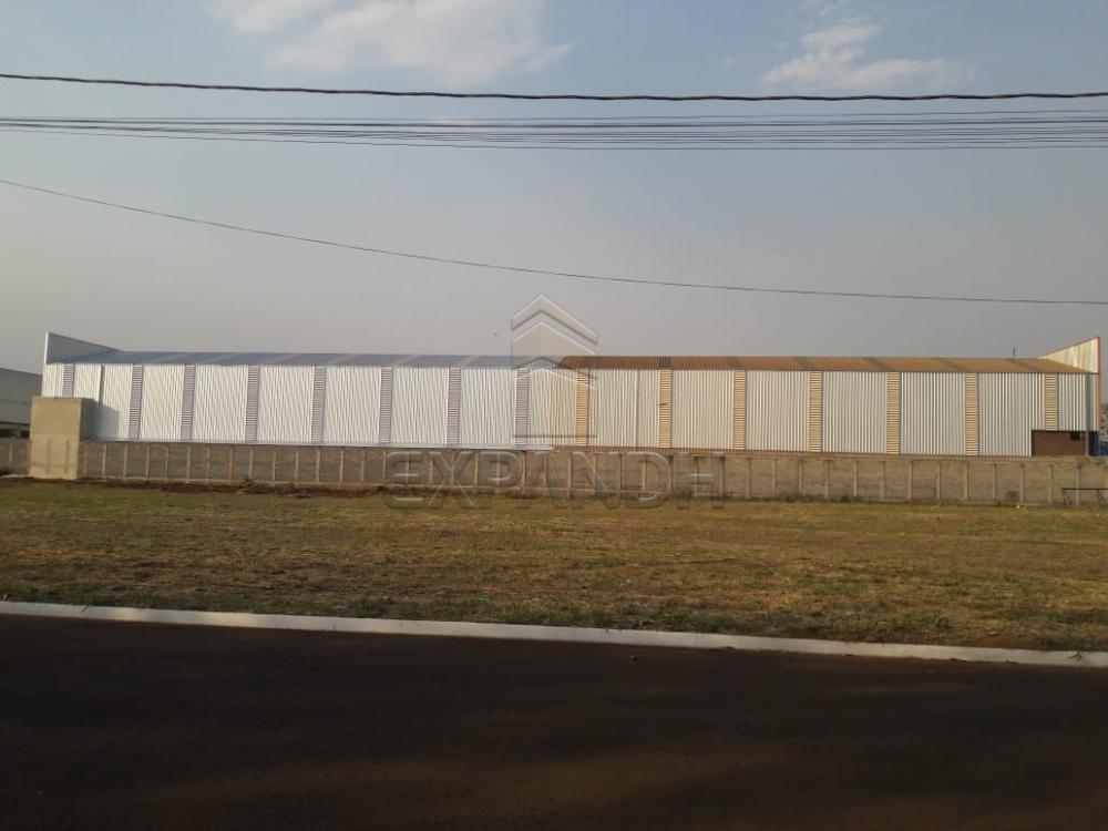Comprar Terrenos / Área em Sertãozinho apenas R$ 290.000,00 - Foto 1