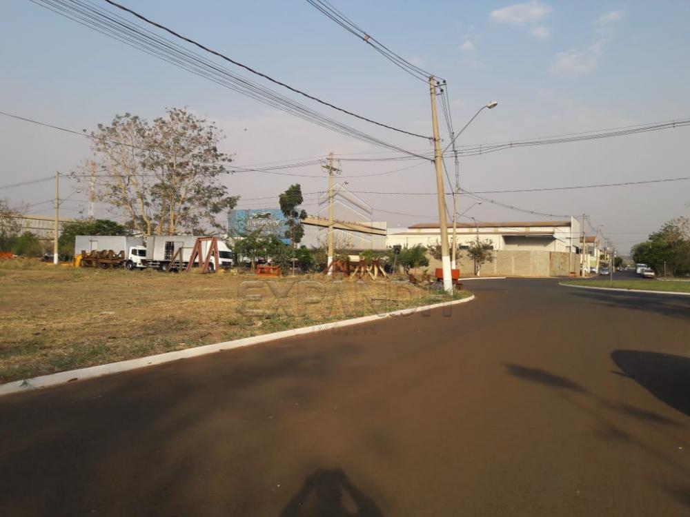 Comprar Terrenos / Área em Sertãozinho apenas R$ 290.000,00 - Foto 2
