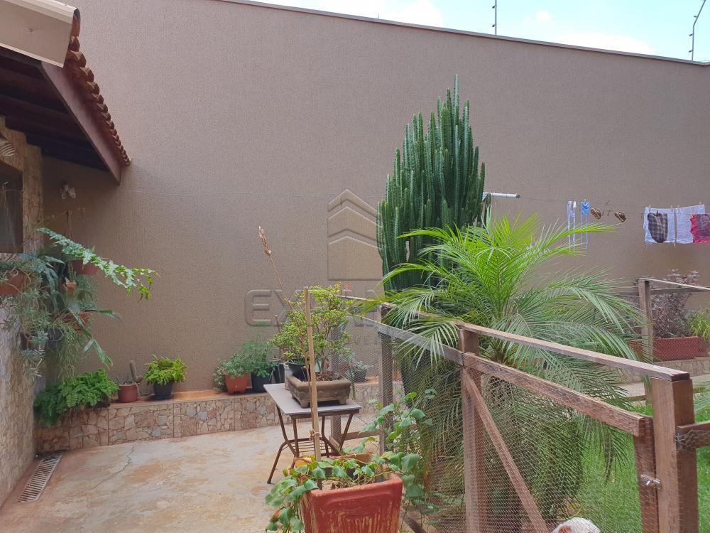 Comprar Casas / Padrão em Sertãozinho apenas R$ 440.000,00 - Foto 8