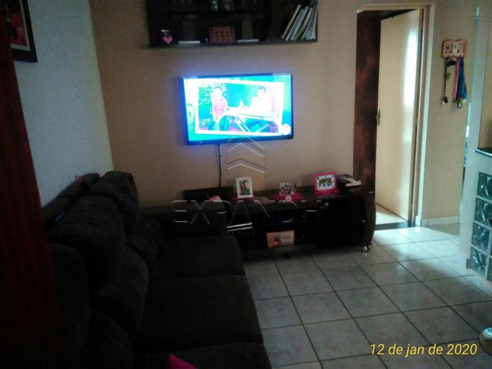Comprar Apartamentos / Padrão em Sertãozinho apenas R$ 150.000,00 - Foto 4