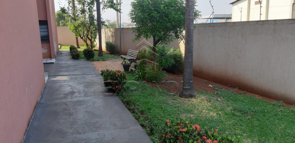 Comprar Apartamentos / Padrão em Sertãozinho apenas R$ 150.000,00 - Foto 3