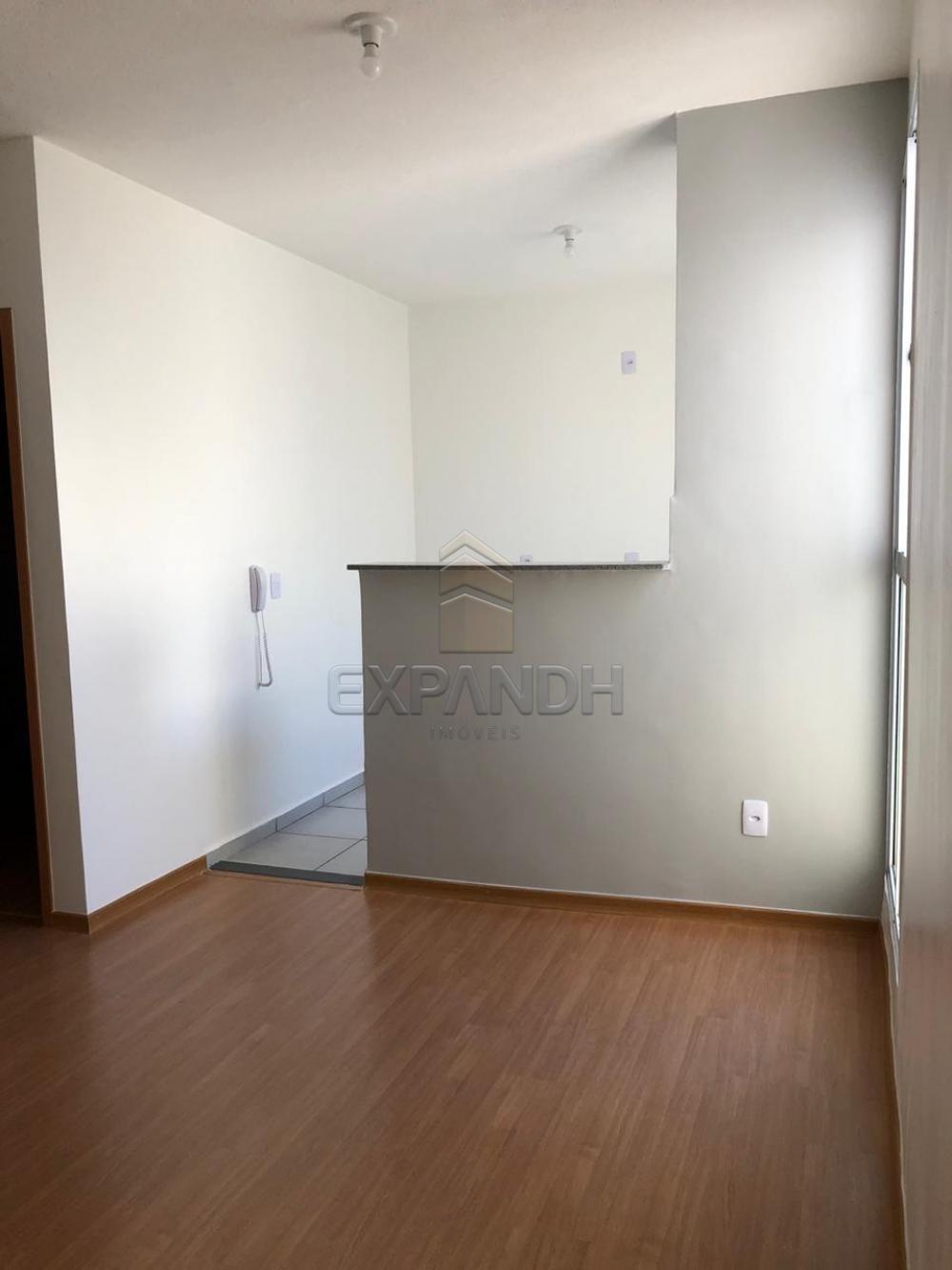 Alugar Apartamentos / Padrão em Sertãozinho apenas R$ 650,00 - Foto 2