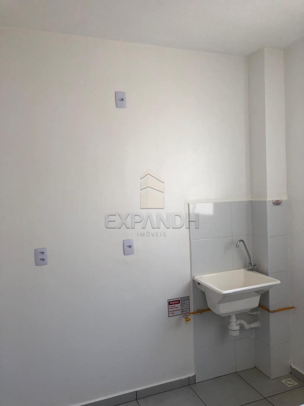 Alugar Apartamentos / Padrão em Sertãozinho apenas R$ 650,00 - Foto 4