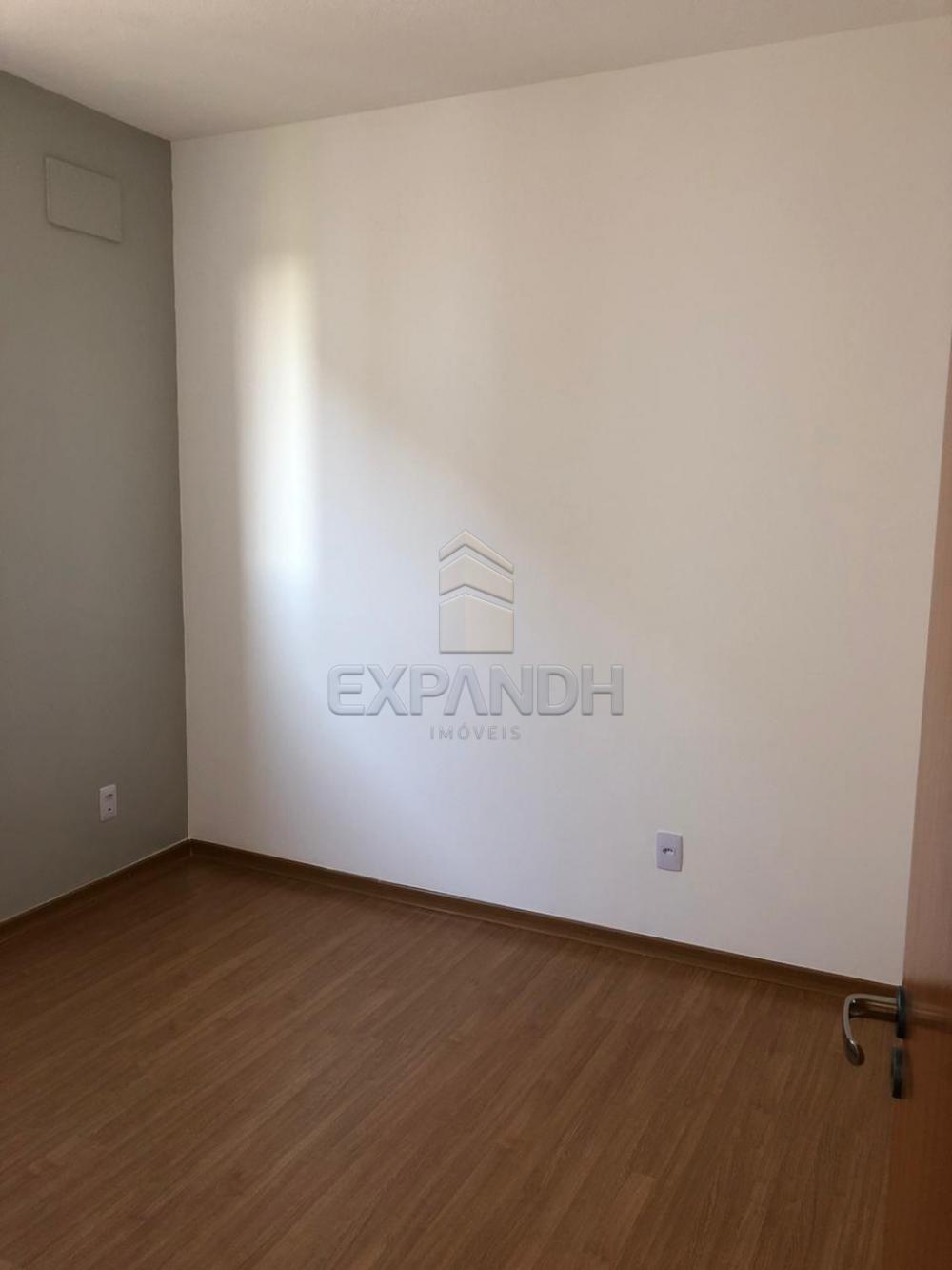 Alugar Apartamentos / Padrão em Sertãozinho apenas R$ 650,00 - Foto 13