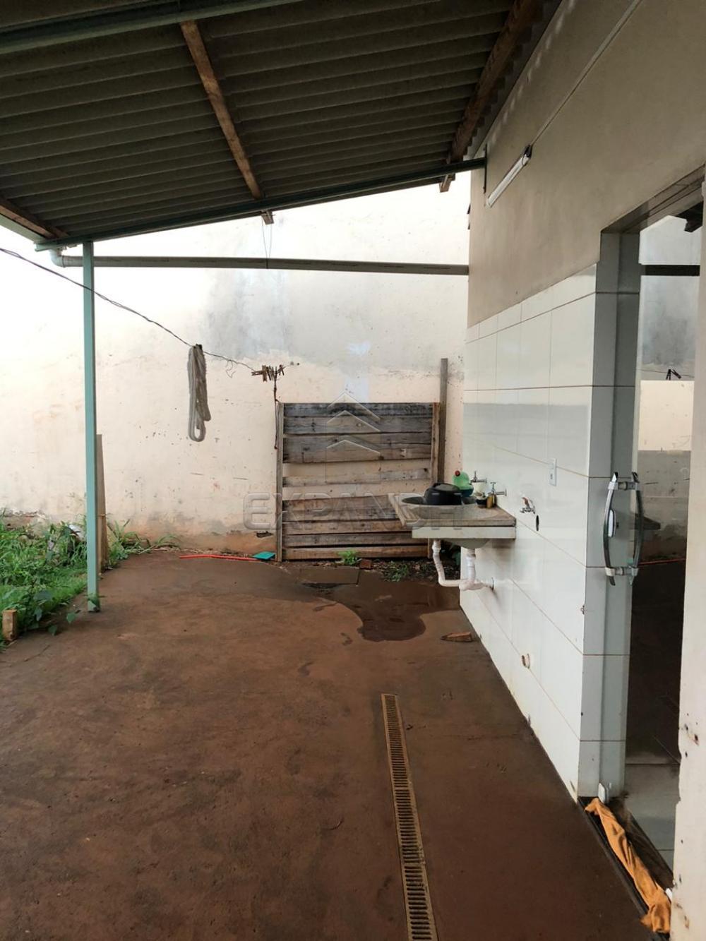 Alugar Casas / Padrão em Sertãozinho R$ 1.050,00 - Foto 10