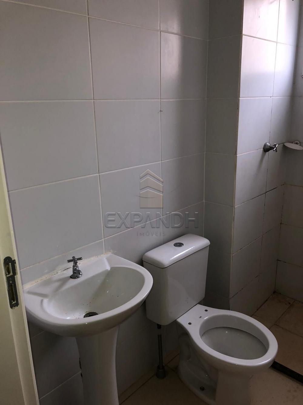 Alugar Apartamentos / Padrão em Sertãozinho R$ 650,00 - Foto 11