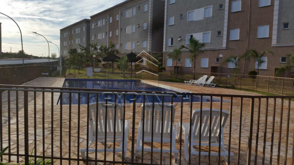 Comprar Apartamentos / Padrão em Sertãozinho R$ 125.000,00 - Foto 6