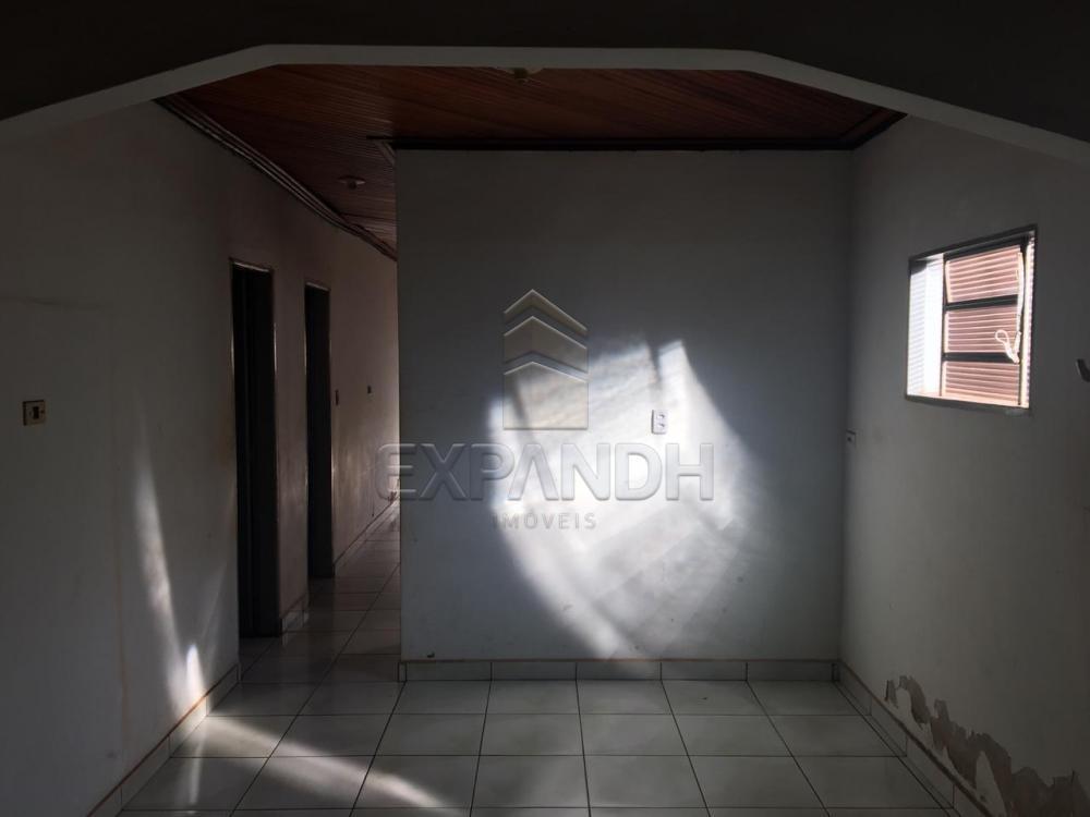 Alugar Casas / Padrão em Sertãozinho apenas R$ 900,00 - Foto 24