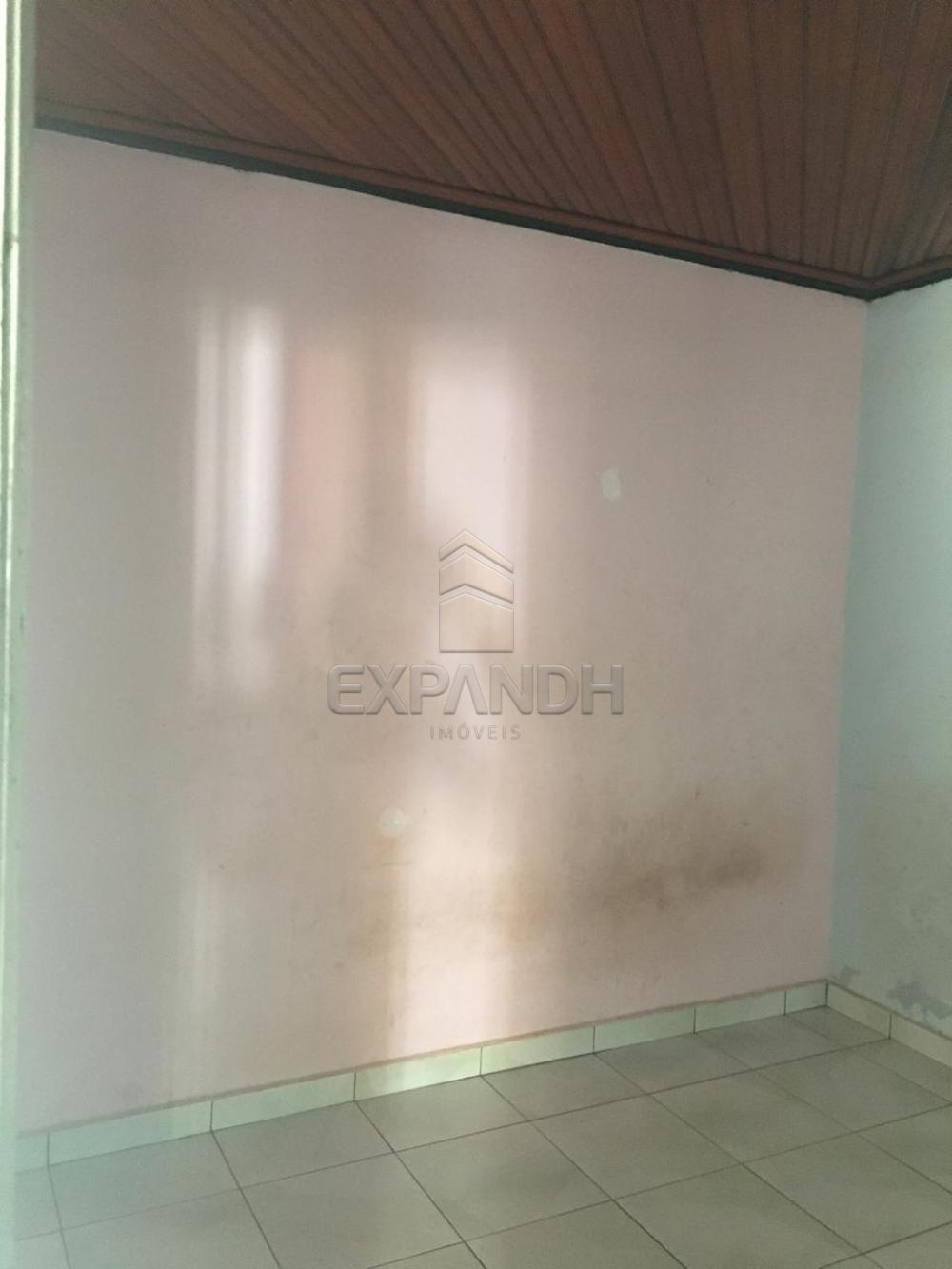 Alugar Casas / Padrão em Sertãozinho apenas R$ 900,00 - Foto 28