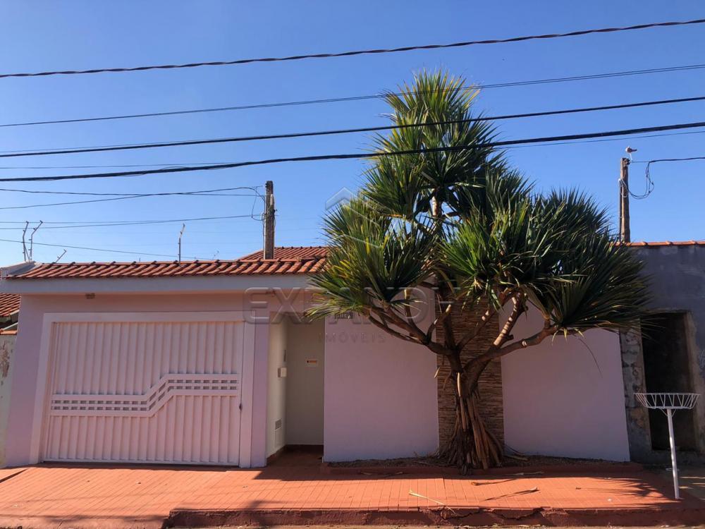 Alugar Casas / Padrão em Sertãozinho R$ 1.300,00 - Foto 1