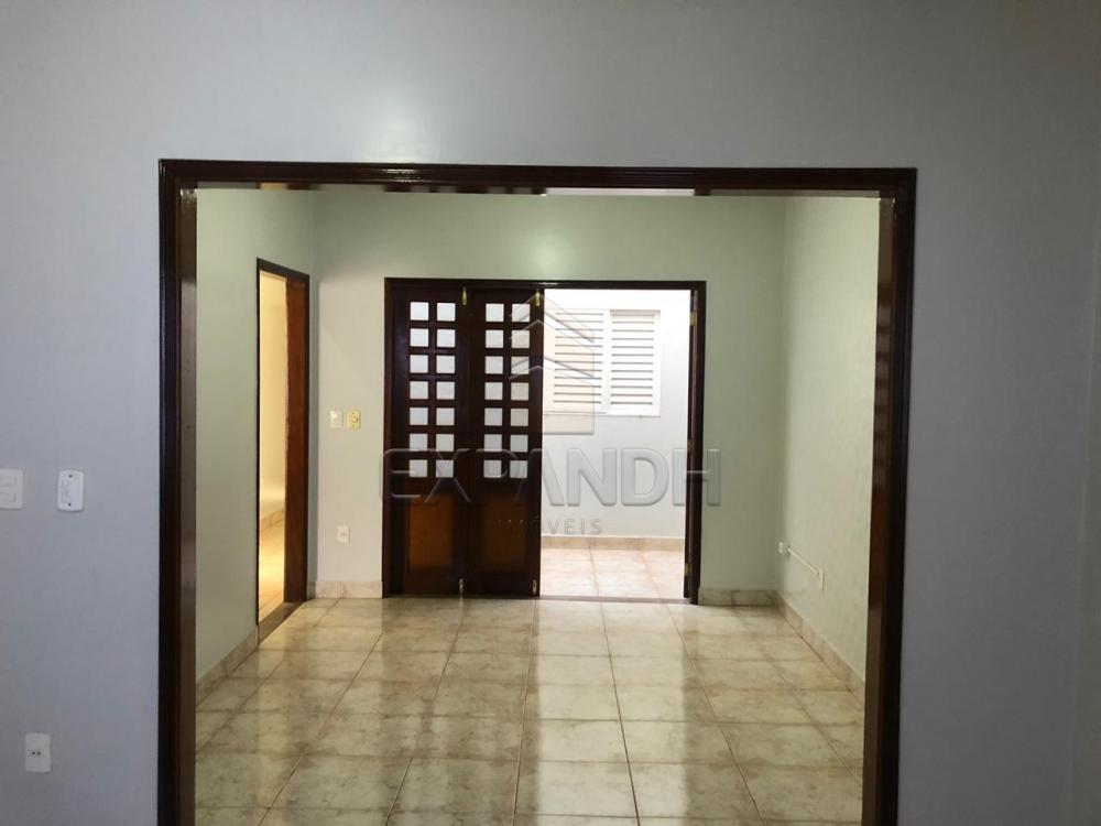Alugar Casas / Padrão em Sertãozinho R$ 1.300,00 - Foto 8