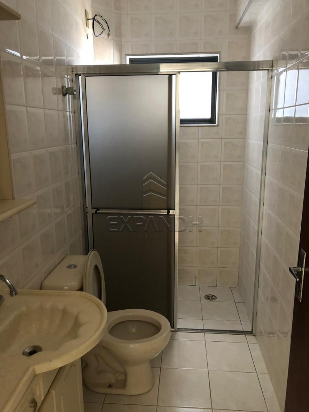 Alugar Apartamentos / Padrão em Sertãozinho apenas R$ 900,00 - Foto 13