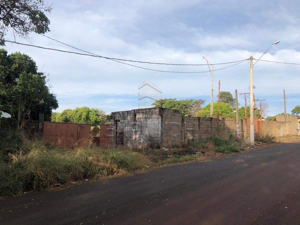 Alugar Rurais / Chácara em Sertãozinho apenas R$ 1.300,00 - Foto 1
