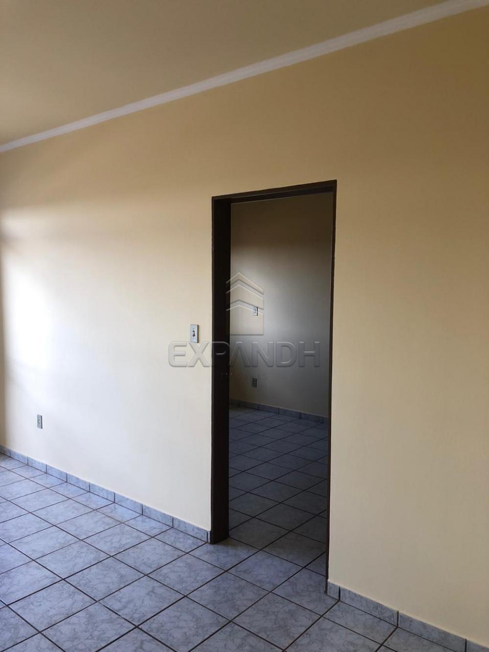 Alugar Apartamentos / Padrão em Sertãozinho apenas R$ 650,00 - Foto 9