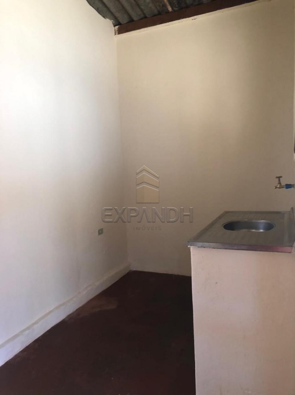 Alugar Casas / Padrão em Sertãozinho R$ 505,00 - Foto 5