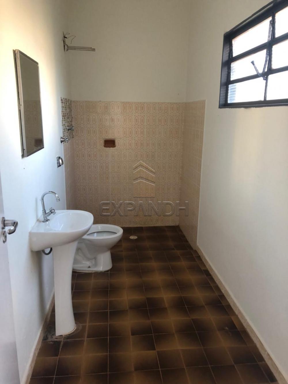 Alugar Casas / Padrão em Sertãozinho R$ 1.500,00 - Foto 29