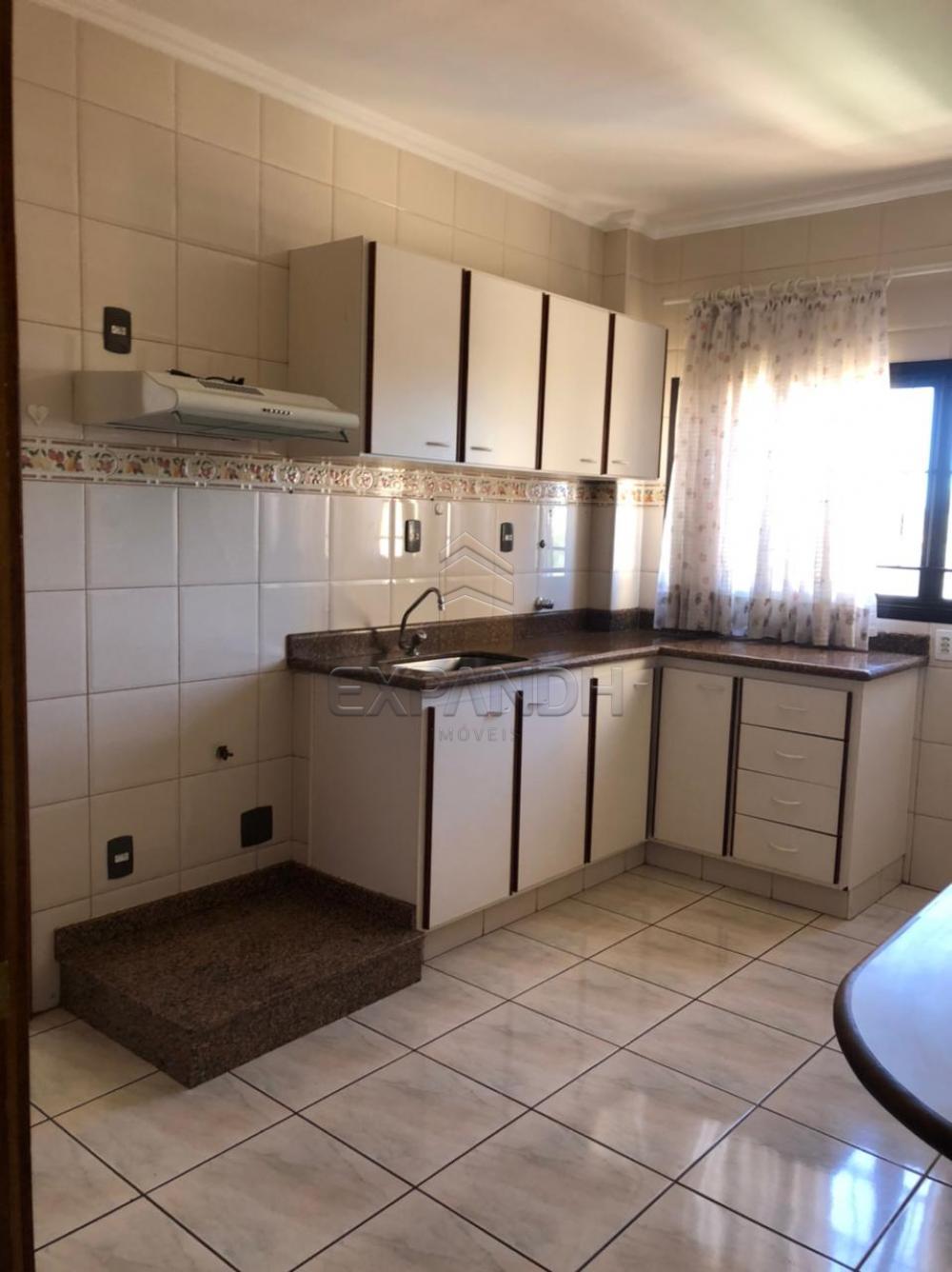 Alugar Apartamentos / Padrão em Sertãozinho R$ 1.350,00 - Foto 6