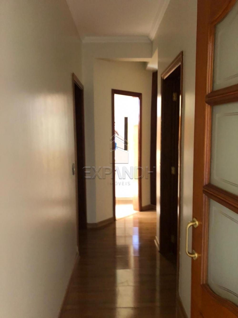 Alugar Apartamentos / Padrão em Sertãozinho R$ 1.350,00 - Foto 14