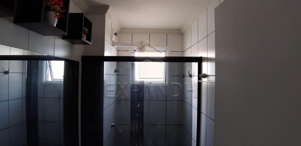 Alugar Apartamentos / Padrão em Sertãozinho R$ 675,00 - Foto 13