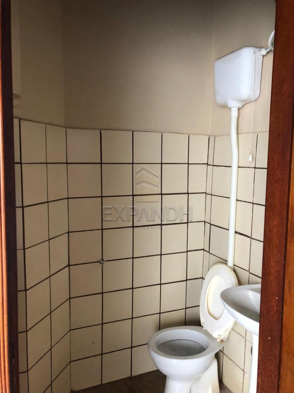 Alugar Casas / Padrão em Sertãozinho R$ 1.100,00 - Foto 12