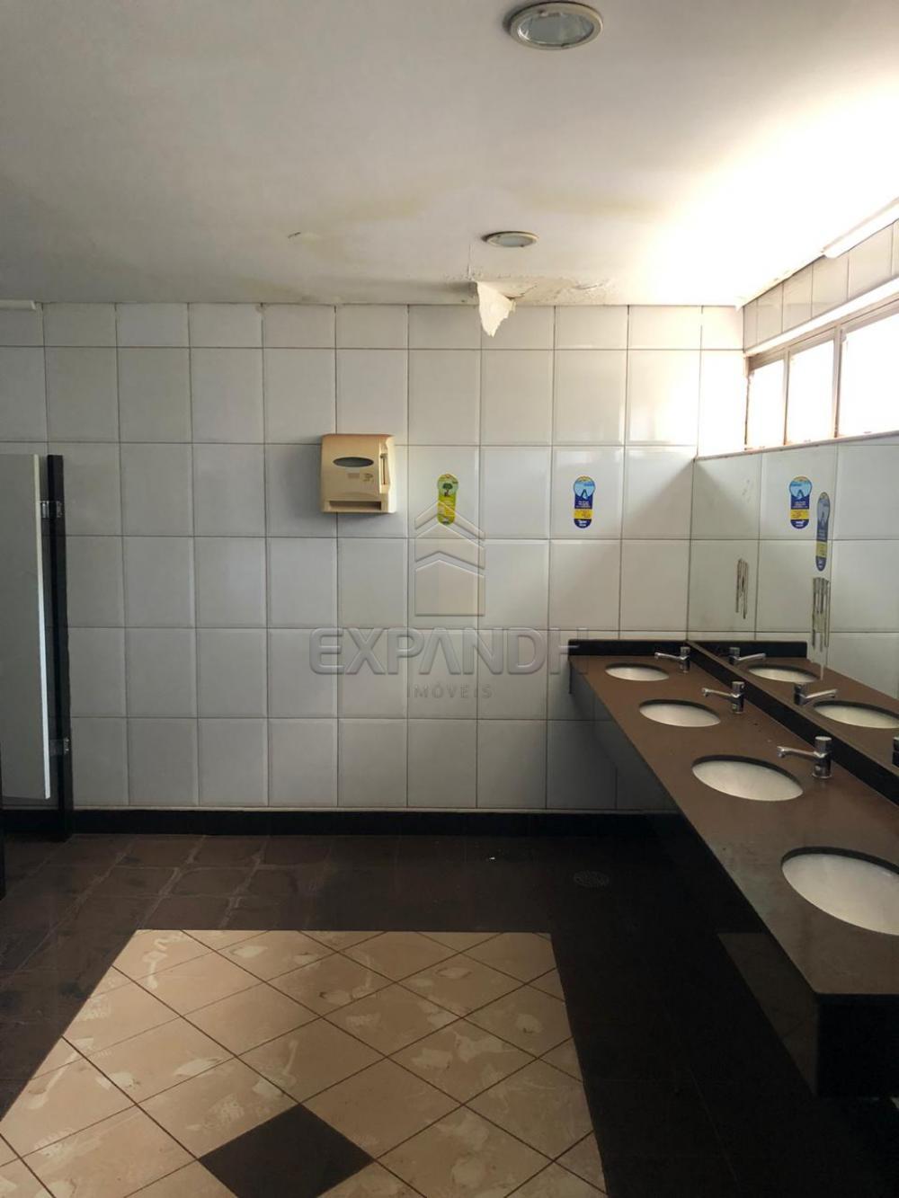 Alugar Comerciais / Sala em Sertãozinho R$ 4.000,00 - Foto 13