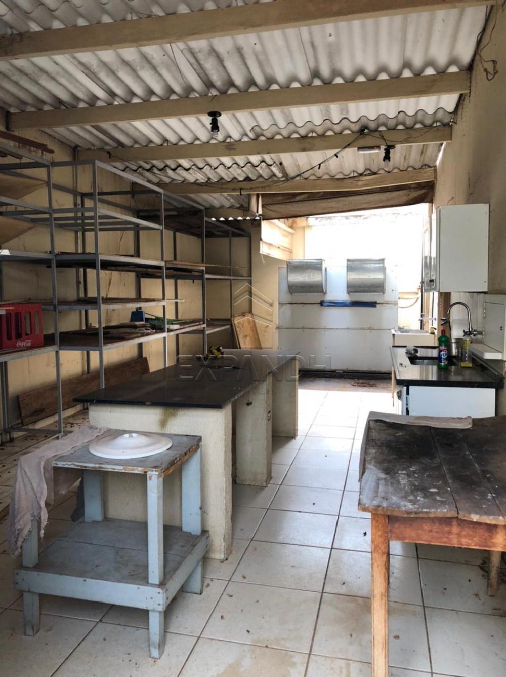 Alugar Comerciais / Salão em Sertãozinho R$ 12.500,00 - Foto 18