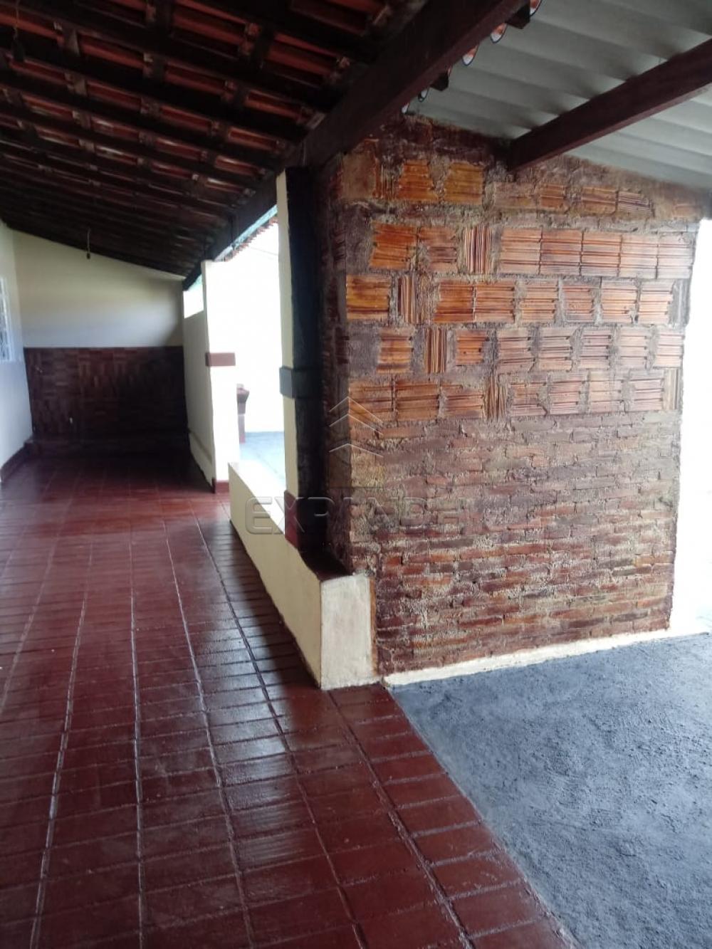 Alugar Casas / Padrão em Sertãozinho R$ 690,00 - Foto 5