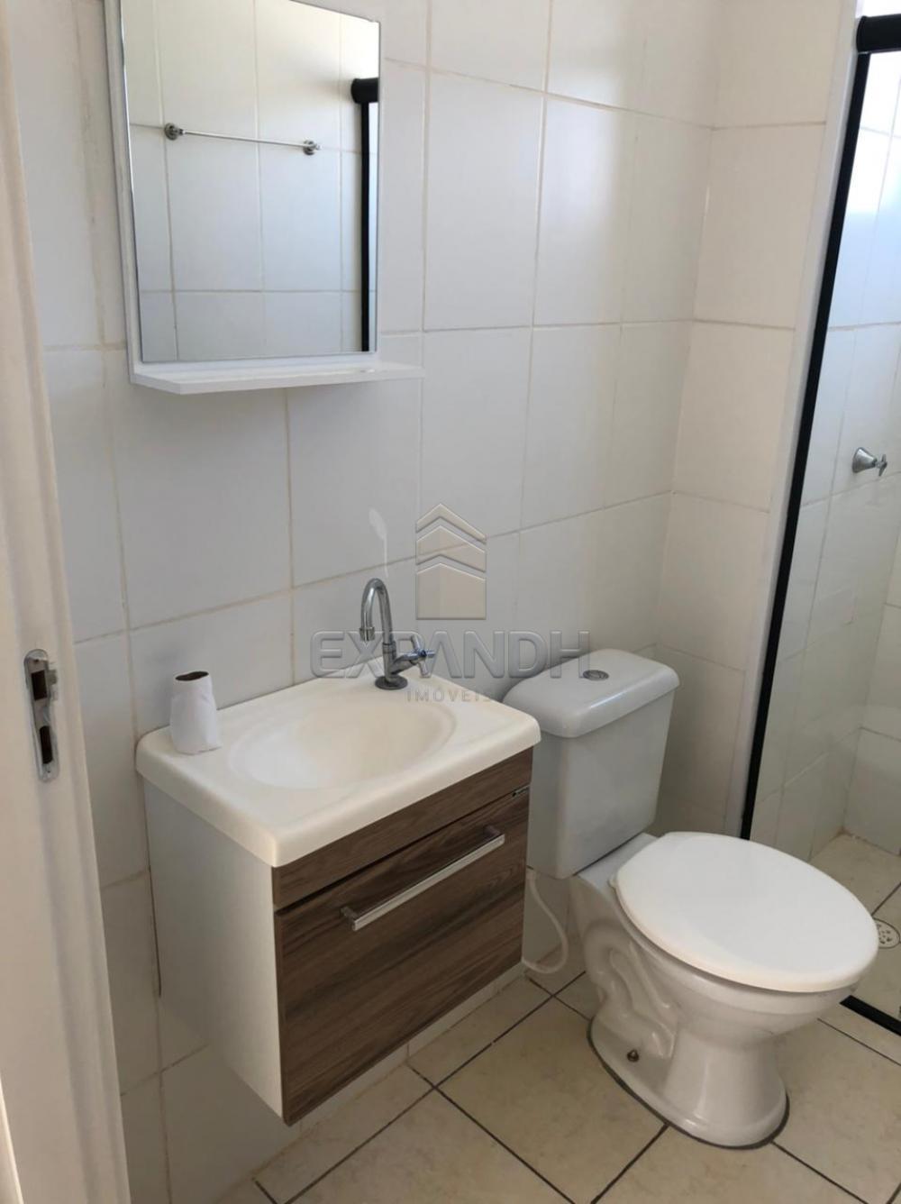Alugar Apartamentos / Padrão em Sertãozinho R$ 780,00 - Foto 7