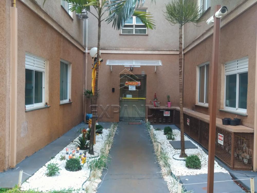 Alugar Apartamentos / Padrão em Sertãozinho R$ 780,00 - Foto 2