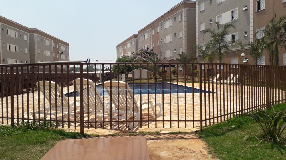 Alugar Apartamentos / Padrão em Sertãozinho R$ 780,00 - Foto 3