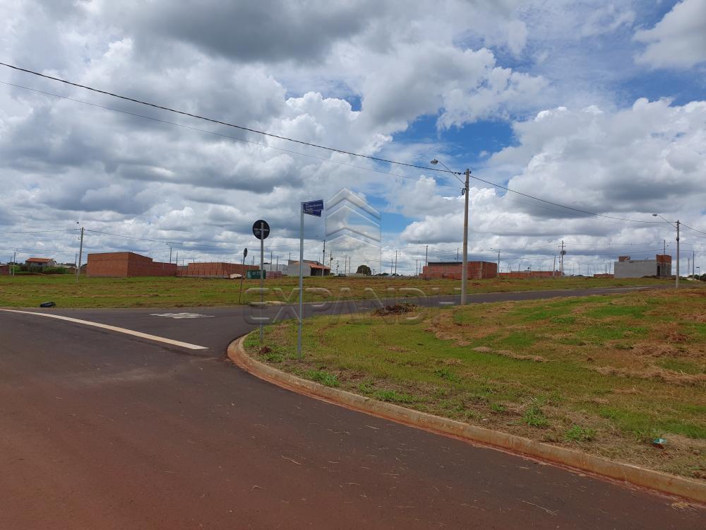 Comprar Terrenos / Padrão em Cruz das Posses R$ 77.000,00 - Foto 4