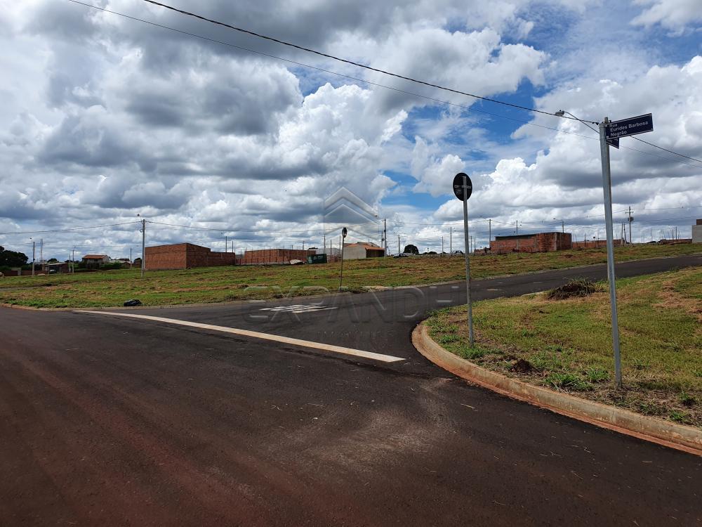 Comprar Terrenos / Padrão em Cruz das Posses R$ 77.000,00 - Foto 3
