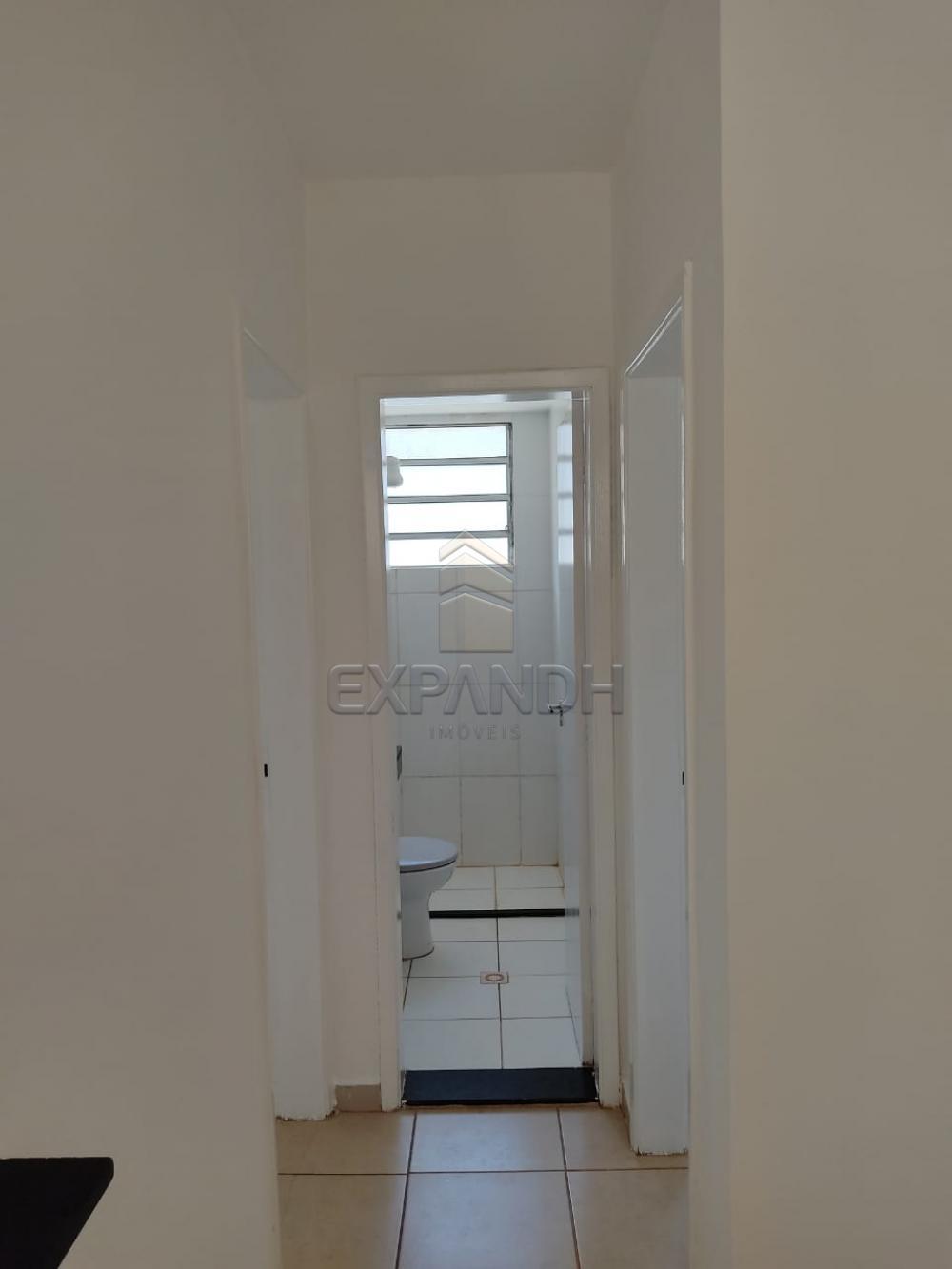 Alugar Apartamentos / Padrão em Sertãozinho R$ 550,00 - Foto 6