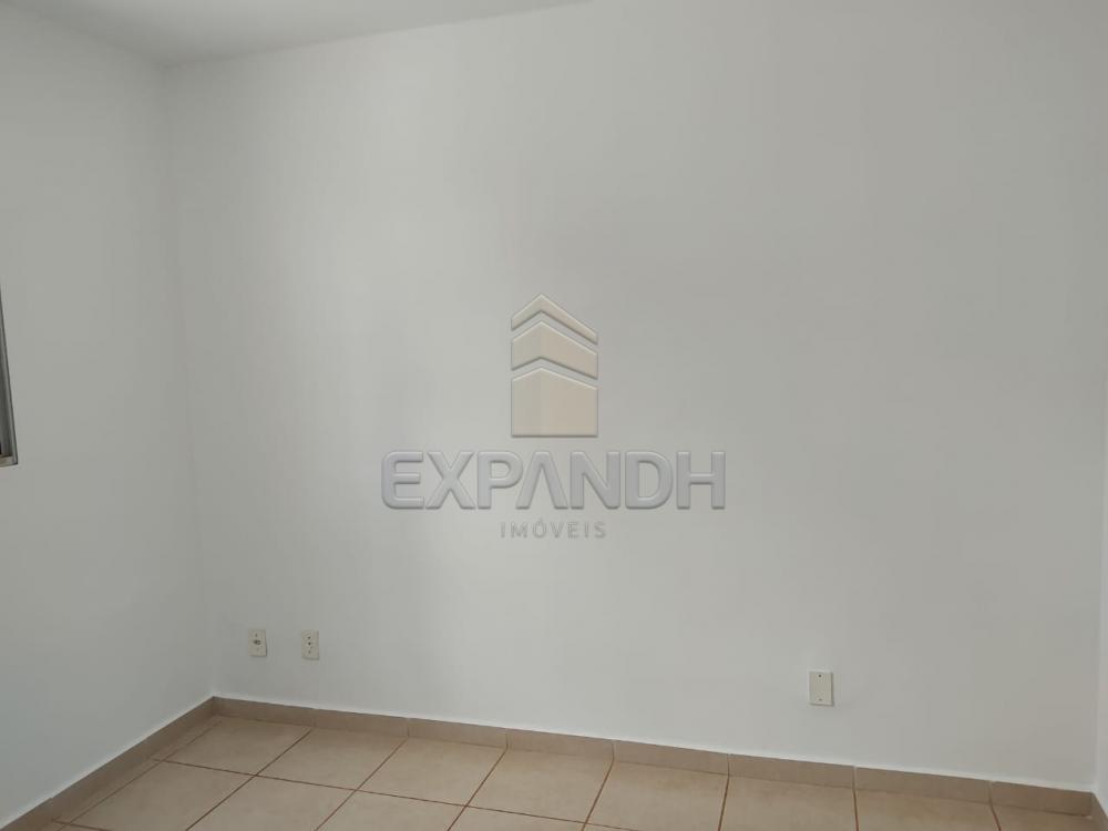Alugar Apartamentos / Padrão em Sertãozinho R$ 550,00 - Foto 8