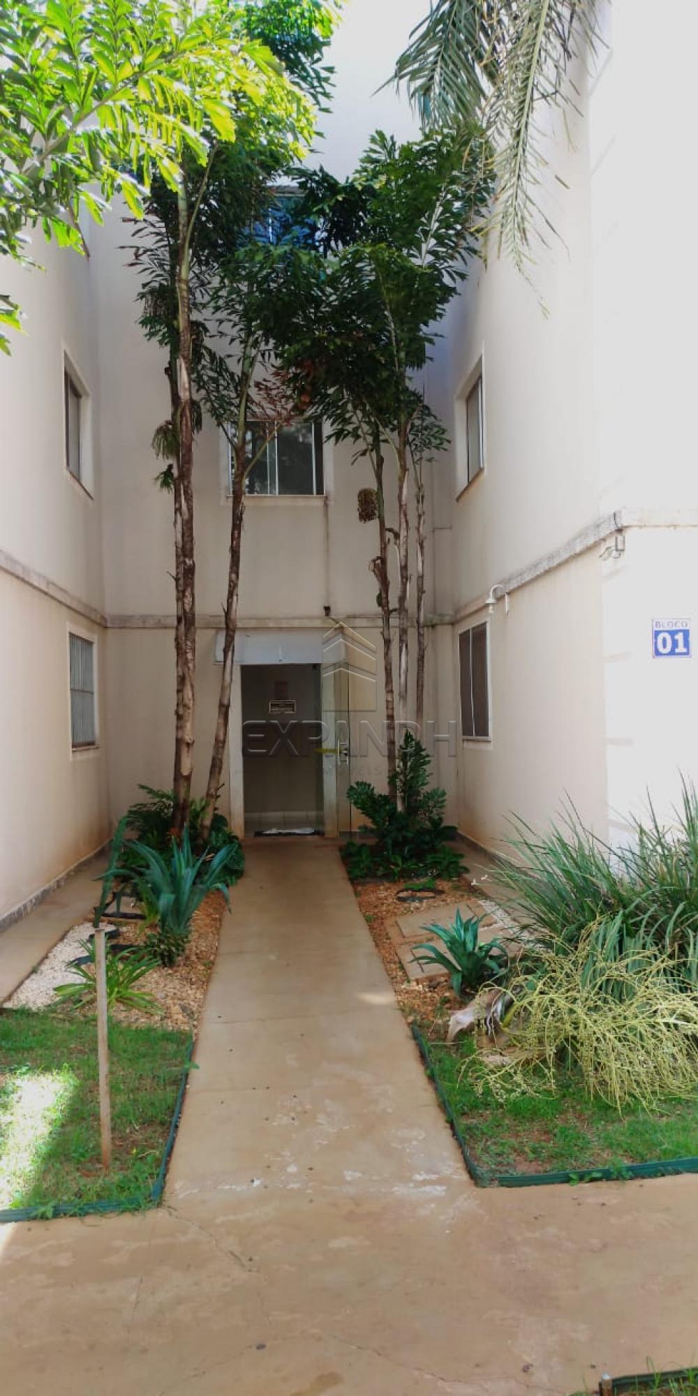 Comprar Apartamentos / Padrão em Sertãozinho R$ 148.000,00 - Foto 3