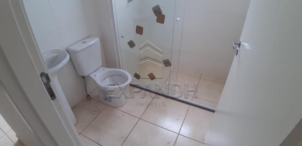 Alugar Apartamentos / Padrão em Sertãozinho apenas R$ 650,00 - Foto 7