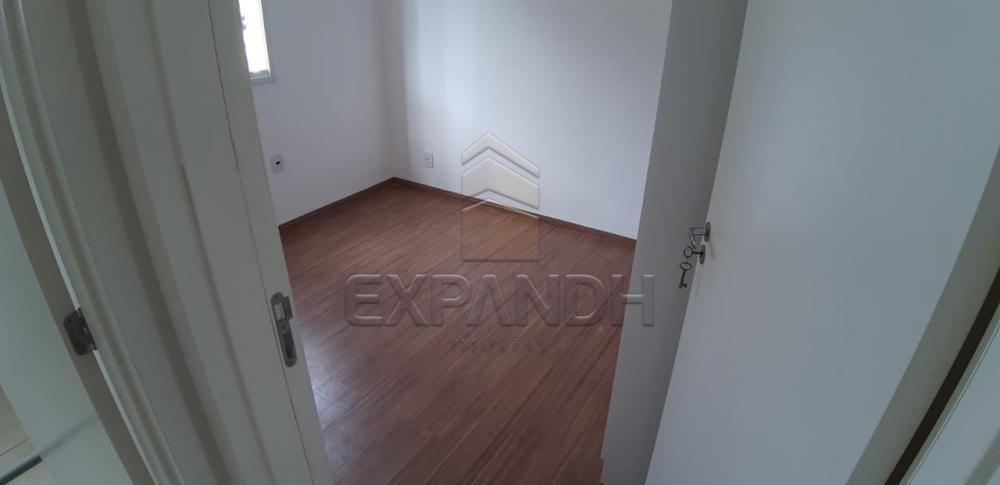 Alugar Apartamentos / Padrão em Sertãozinho apenas R$ 650,00 - Foto 11