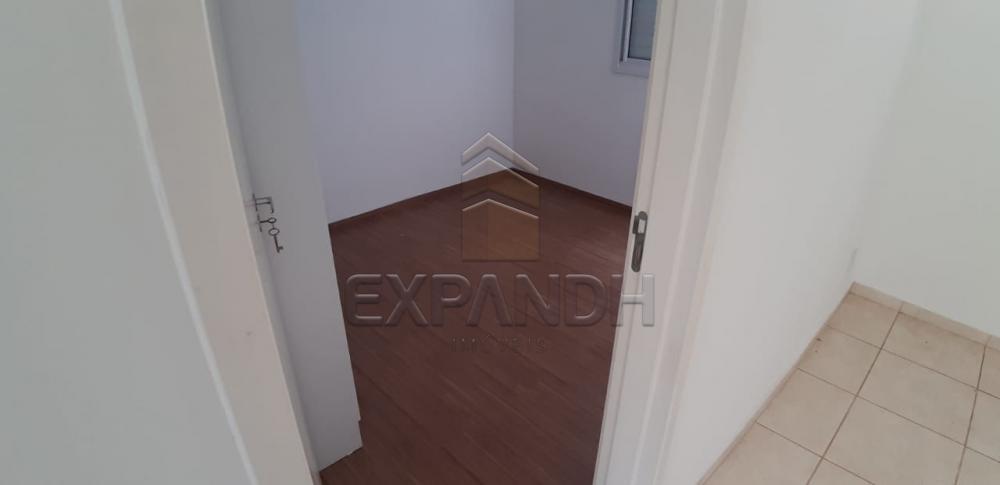Alugar Apartamentos / Padrão em Sertãozinho apenas R$ 650,00 - Foto 14