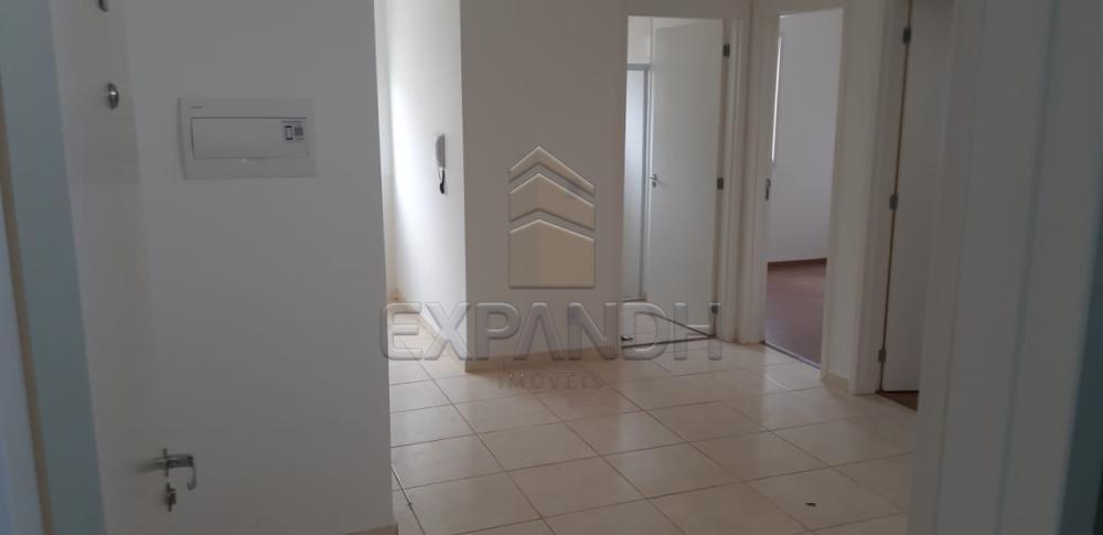 Alugar Apartamentos / Padrão em Sertãozinho apenas R$ 650,00 - Foto 19
