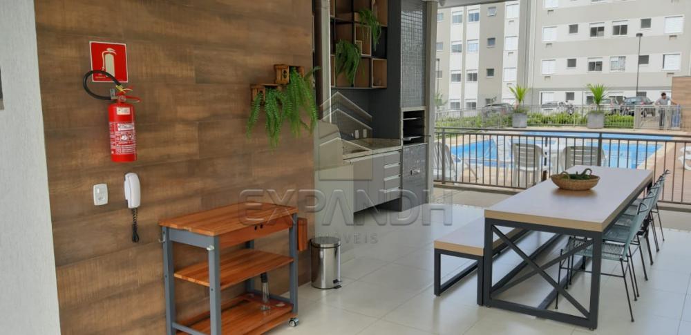 Alugar Apartamentos / Padrão em Sertãozinho apenas R$ 650,00 - Foto 22