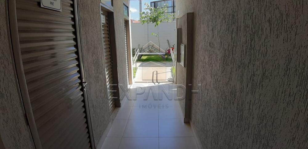 Alugar Apartamentos / Padrão em Sertãozinho apenas R$ 650,00 - Foto 30