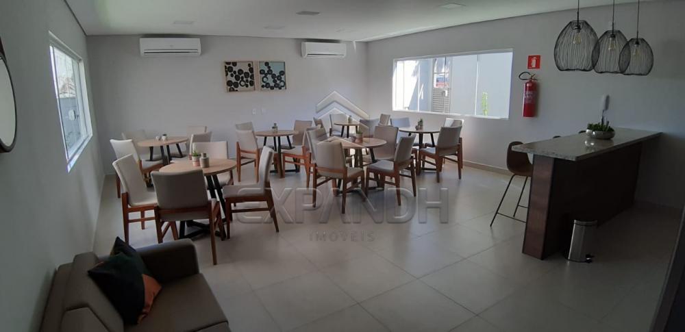 Alugar Apartamentos / Padrão em Sertãozinho apenas R$ 650,00 - Foto 31