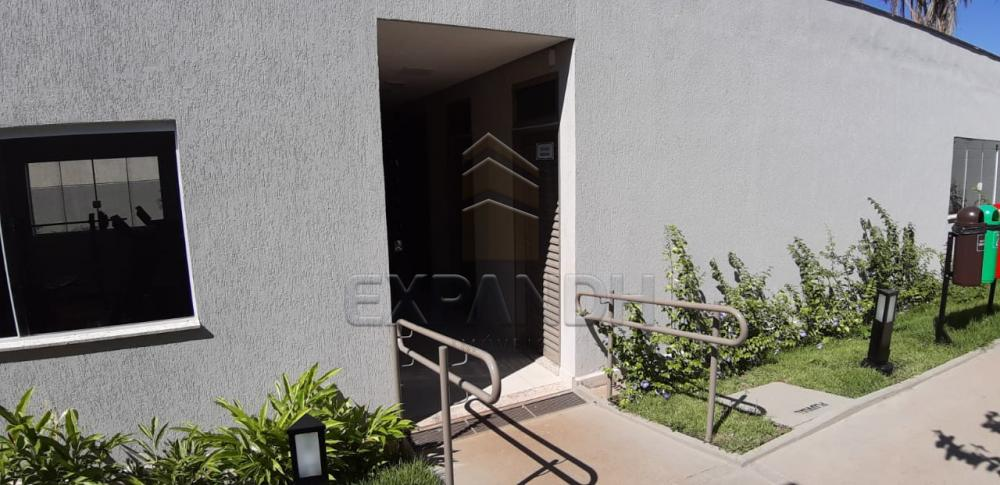 Alugar Apartamentos / Padrão em Sertãozinho apenas R$ 650,00 - Foto 32