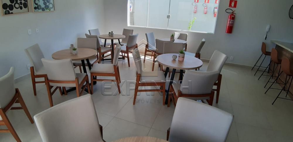 Alugar Apartamentos / Padrão em Sertãozinho apenas R$ 650,00 - Foto 34