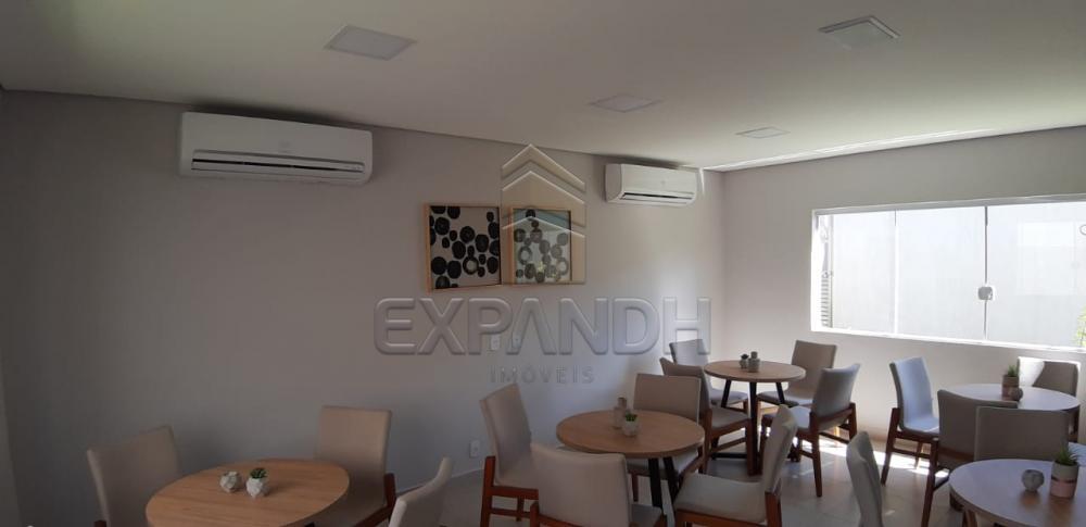 Alugar Apartamentos / Padrão em Sertãozinho apenas R$ 650,00 - Foto 36