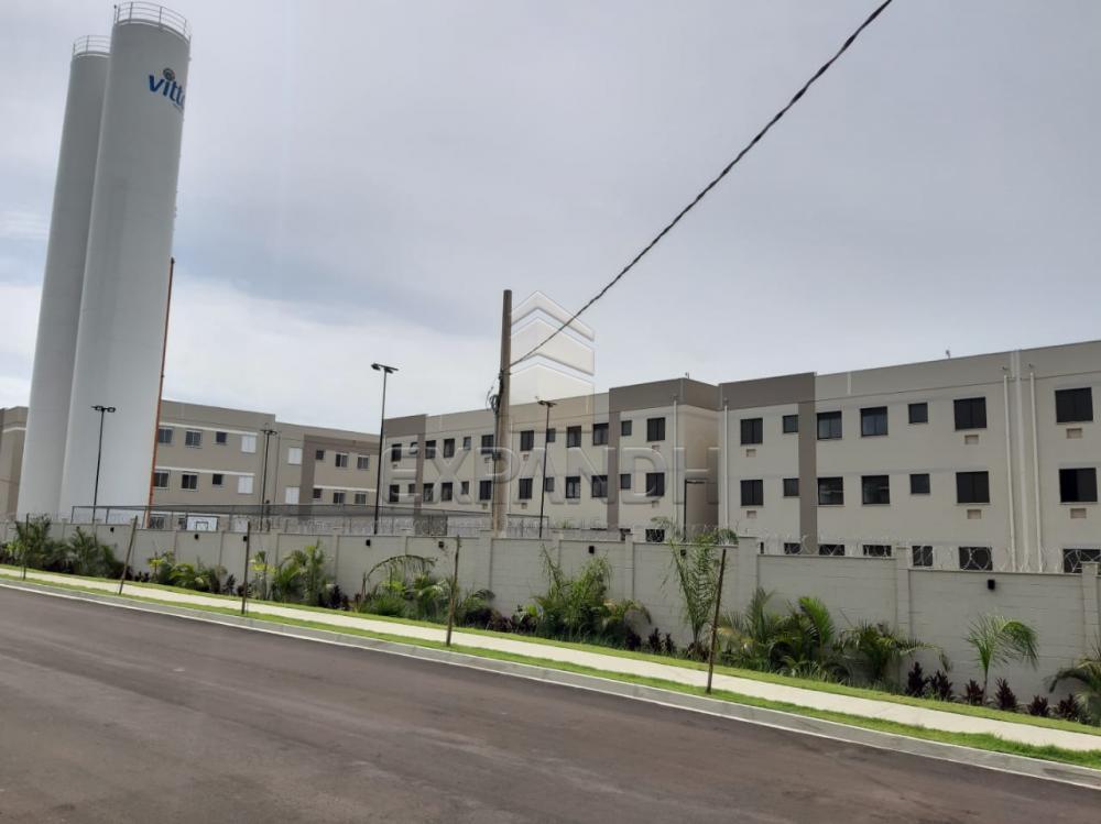 Alugar Apartamentos / Padrão em Sertãozinho apenas R$ 450,00 - Foto 1