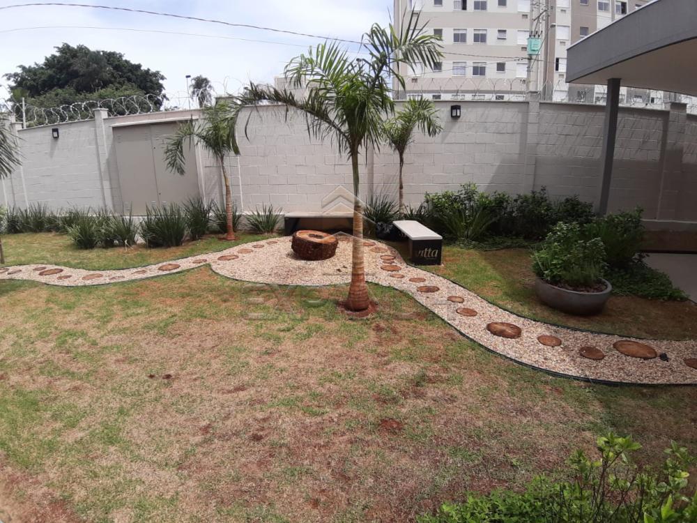 Alugar Apartamentos / Padrão em Sertãozinho apenas R$ 450,00 - Foto 5
