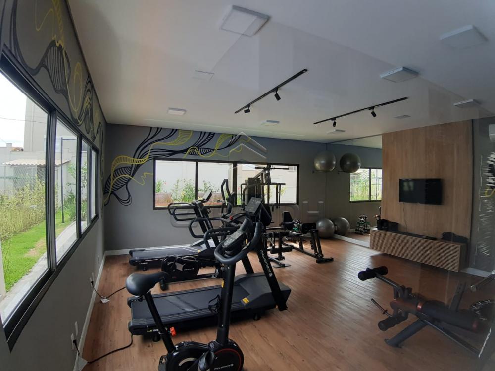 Alugar Apartamentos / Padrão em Sertãozinho apenas R$ 450,00 - Foto 8