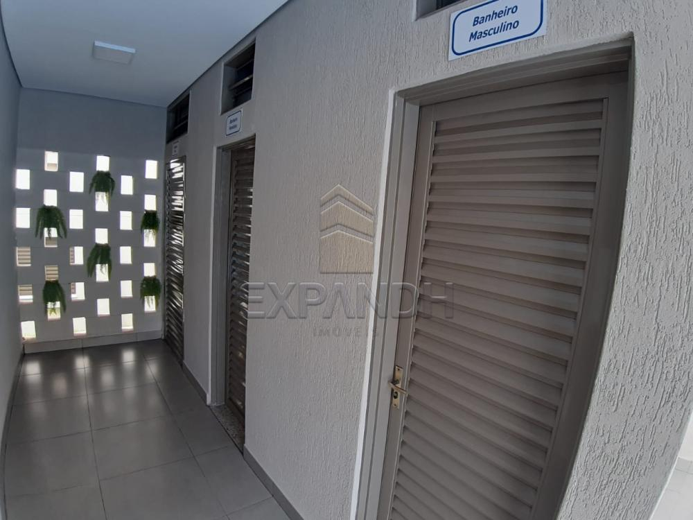 Alugar Apartamentos / Padrão em Sertãozinho apenas R$ 450,00 - Foto 9